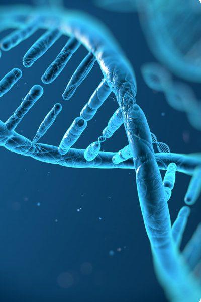 Molekulární biologie